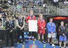 State wrestling meet ends with Escandons on the medal stand